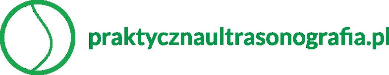 logo - praktyczna